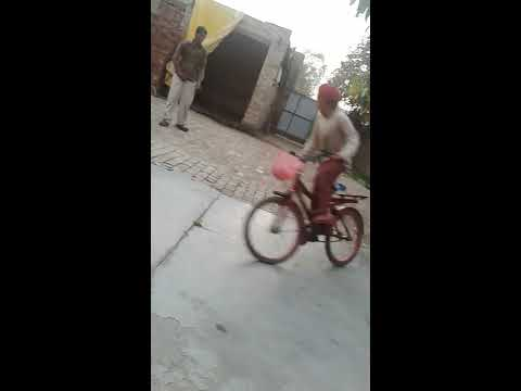 Pakistani bully kutta playing