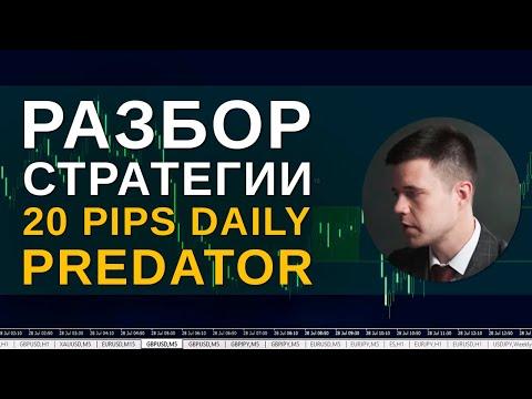 КАК ТОРГОВАТЬ ПО СТРАТЕГИИ 20 Pips Daily Predator. ПРИМЕРЫ СДЕЛОК НА ПАРЕ GBPUSD