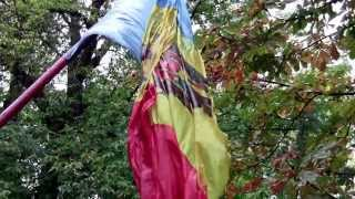 Tricolor vlăguit la Școala internat-auxiliară din Bălți