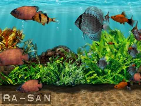 3D Fish School Screensaver Скачать Бесплатно