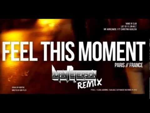 Pitbull feat. Christina Aguilera - Feel This Moment (Luan Peterson Remix)