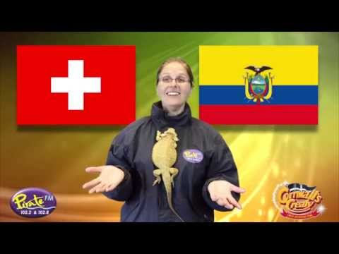 Cornwall's Crealy and Pirate FM's Psychic Animals 2014 - Switzerland v Ecuador