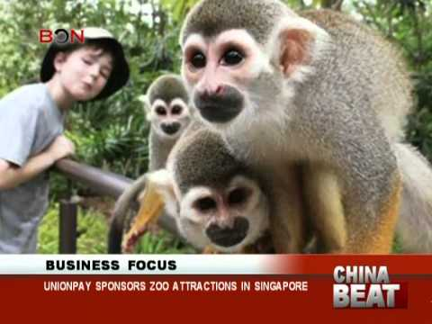 UnionPay sponsors zoo attractions in Singapore - China Beat - Nov 26,2013 - BONTV China