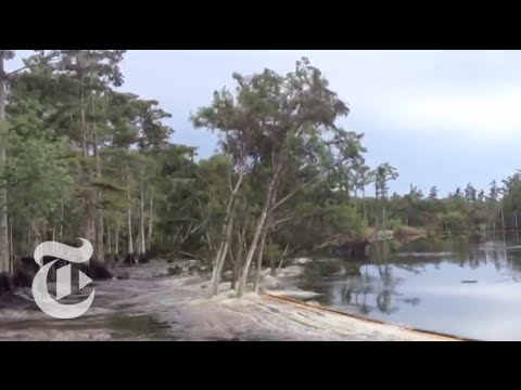Sinkhole in Louisiana Caught on Tape - 2013