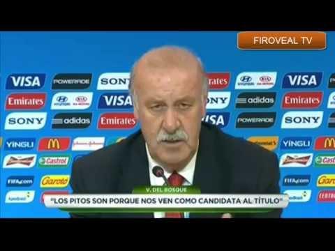 Rueda  de Prensa de Vicente del Bosque - ESPAÑA  1 VS HOLANDA 5