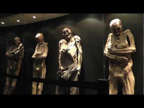 El Museo De Las Momias - Guanajuato Mexico