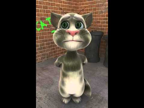 Talking Tom su tu chang phai long cuu non