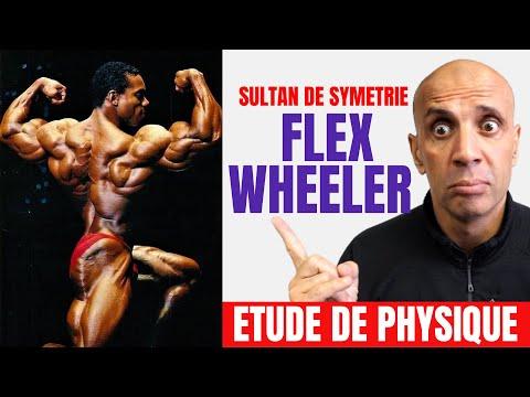 Etude de Physique : Flex Wheeler LE SULTAN DE SYMÉTRIE