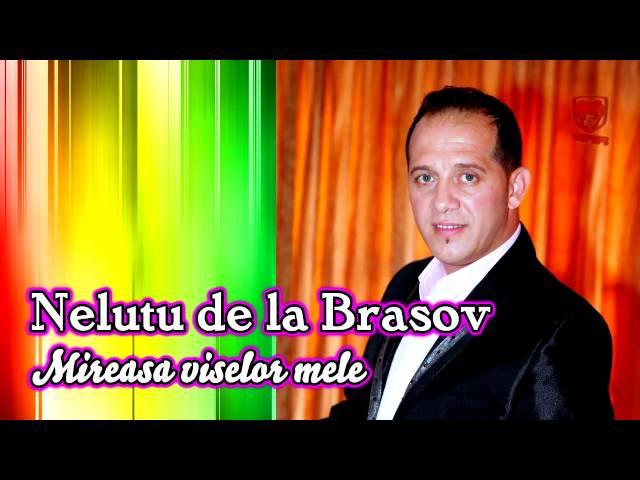 Nelutu de la Brasov - Mireasa viselor mele