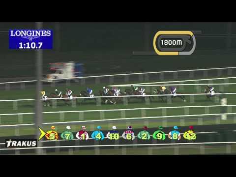 Vidéo de la course PMU NAD AL SHEBA TROPHY