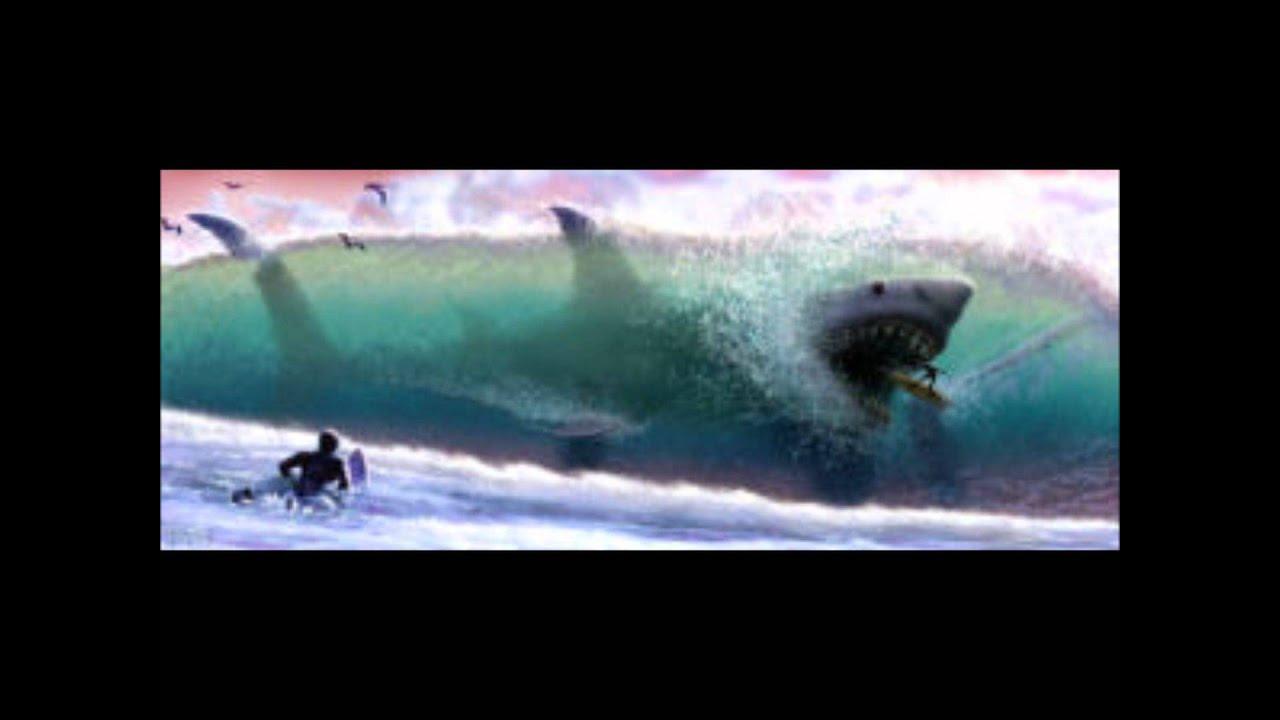 The Megalodon - Monste...