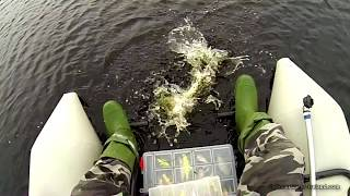 Pike & Perch Fishing With Lures: Bright Vs Dark Side By