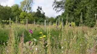 Paroles de jardiniers en Yvelines