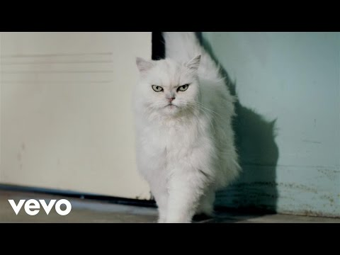 Katy Perry - Roar - From A Meow To A Roar