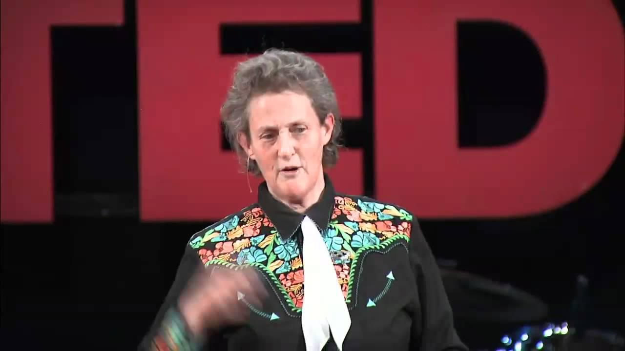 TEDxDU Temple Grandin -- Different kinds of minds