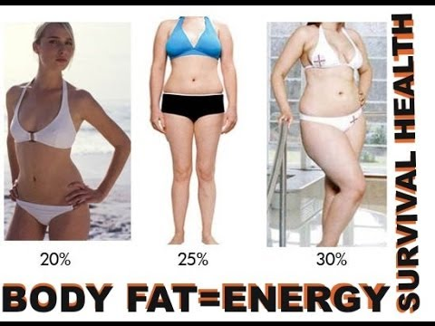 Health and Survival: Body Fat as Energy