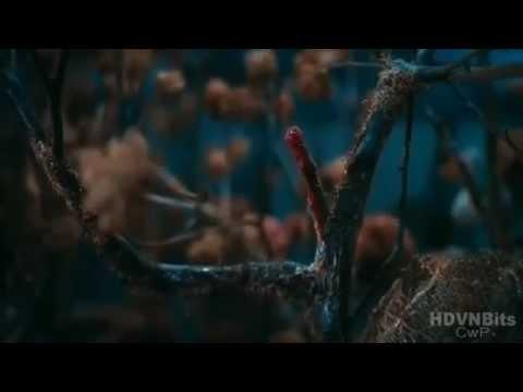 [Full Đẹp] Lời Nguyền Huyết Ngải - Phim Kinh dị Việt Nam