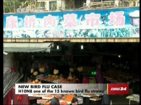 H10N8 bird flu: China confirms first case of human infection in the world