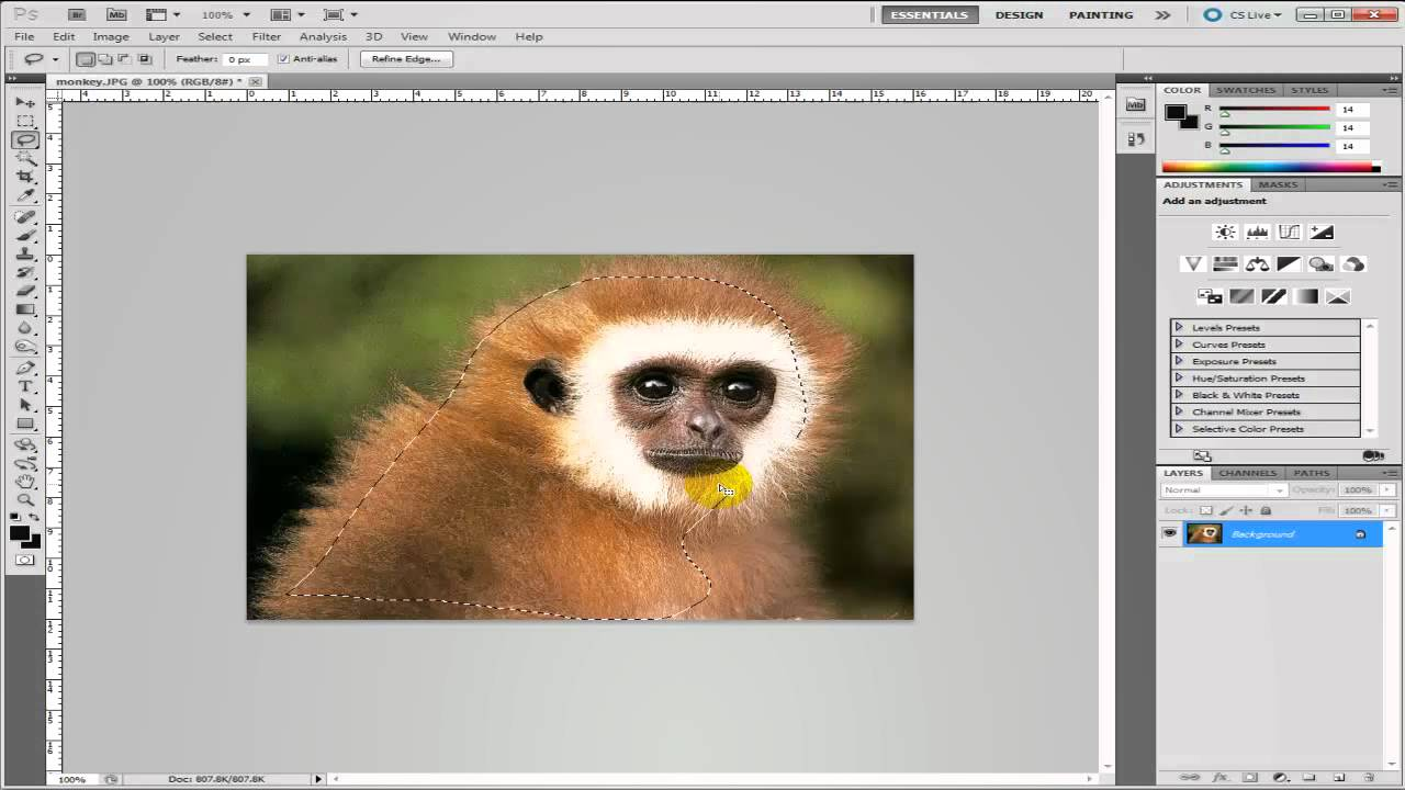 Photoshop won't preserve transparency of pasted images ...