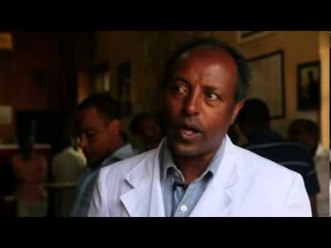 La bourse éthiopienne: la première bourse de marchandises d'Afrique.