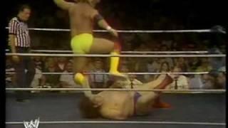 Hogan Vs Andre 1980