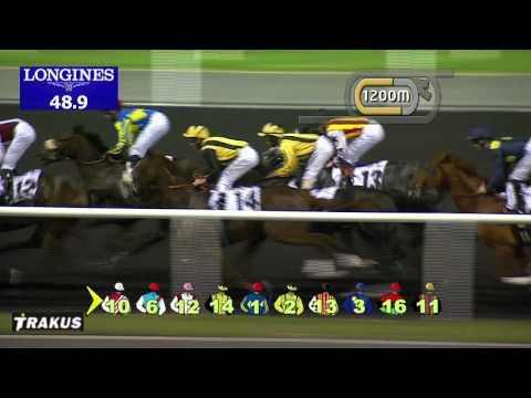 Vidéo de la course PMU HAYAT 95.6