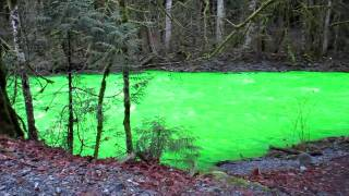Goldstream's Green River