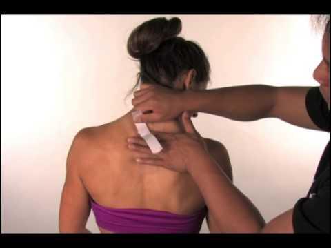 Kinesio pre-cut neck support tape