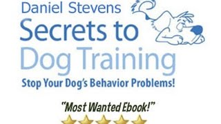 How To Train A Dog Obedience Training Secrets