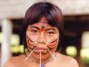 Amazonas - Indios do Brasil