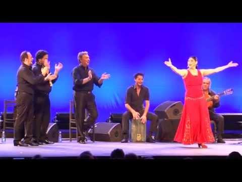 Arte Flamenco, c'est aussi des rencontres inédites
