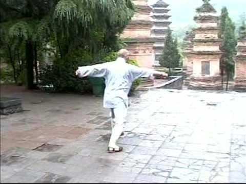 Shaolin Xi Qing Quan - Seven 7 Star Fist Boxing set