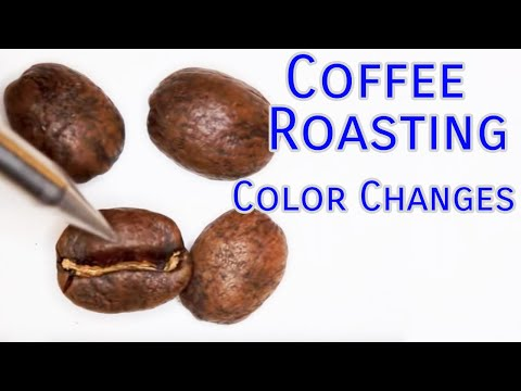 Coffee Roasting Colors