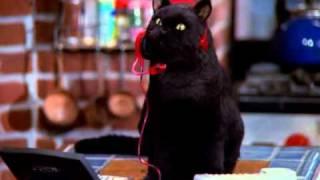 Sabrina - Cô phù thủy nhỏ phần 5 tập 5