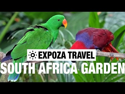 South African Garden Route Travel Guide