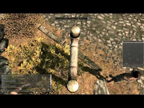 Геймплей видео Skyrim Online