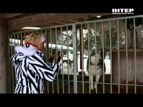 Орёл и Решка - 5.1 Выпуск (Люцерн)