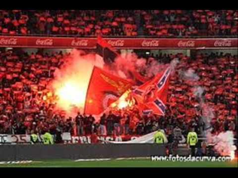 Benfica- Canticos NN Boys.wmv