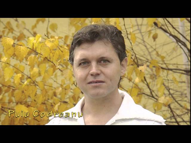 Puiu Codreanu - La birtutu lui Petrica - nou 2014