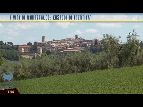 I vini di Montefalco: custodi di identità