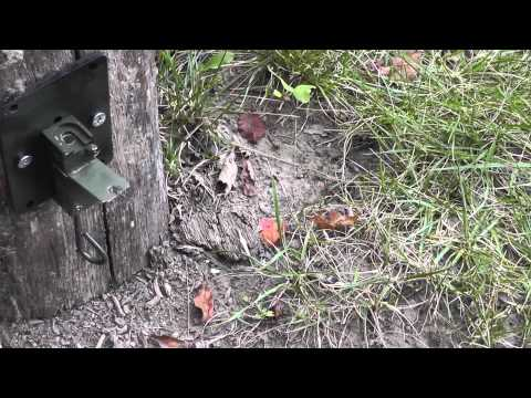 12 Gauge Booby Trap Trip Wire Alarm Review