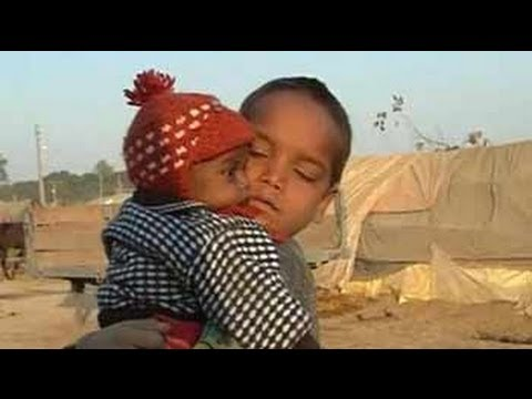 34 children died in aftermath of Muzaffarnagar riots, admits UP government
