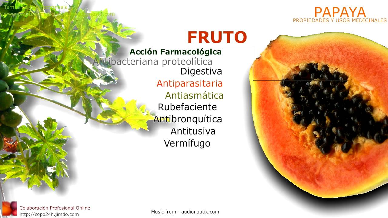 Papaya propiedades y beneficios usos medicinales de la for Planta decorativa con propiedades medicinales