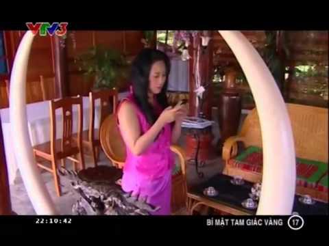 Bí Mật Tam Giác Vàng Tâp 17 Full   Bi Mat Tam Giac Vang Tap 17 Full   YouTube