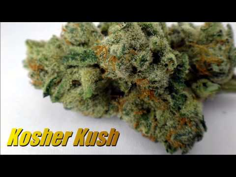 A video mashup of some of our past strains from patient Purple Vet!