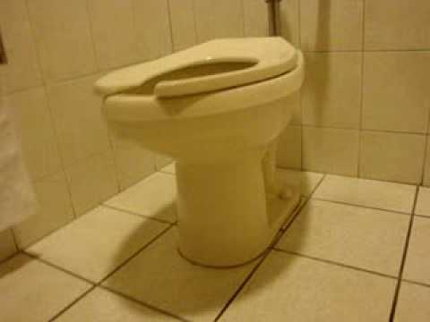 Rare Bone Colored Madera Toilets Youtube