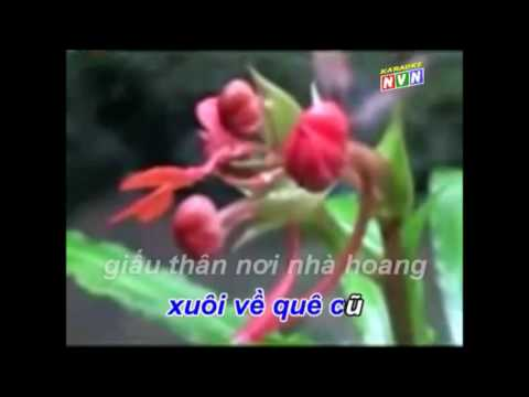 Han Mac Tu Karaoke Giong Hat NGUYEN DANG