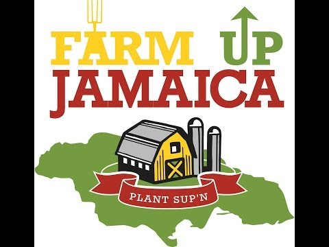WHAT IS FARM UP JAMAICA? GROW MORE ORGANIC FOODS TODAY