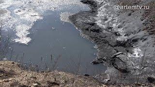 «Токсичные» производственные отходы отравляют артёмовцев