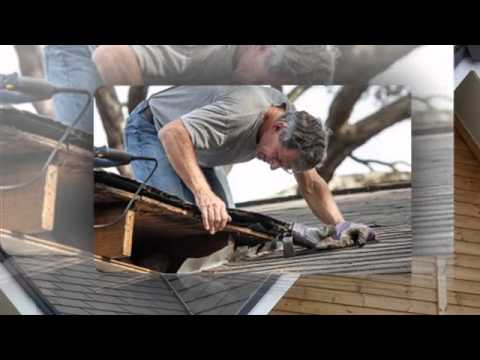 Paul Bange Roofing Inc -- Fort Lauderdale, FL